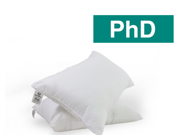 DAG BANTAL HOTEL - PHD